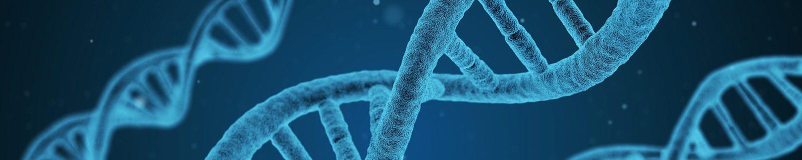 Hintergrundbild Zellstruktur – Fachbereich Biologie