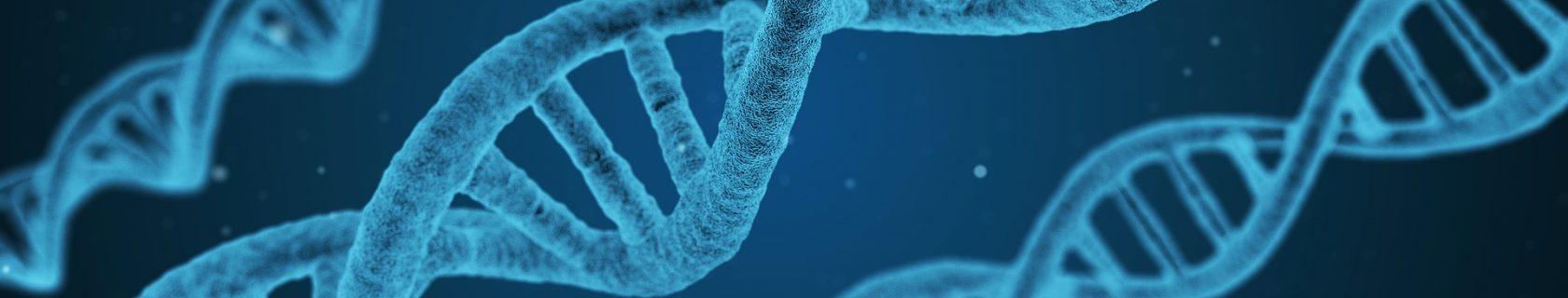 Textbild Chemie DNA-Strang
