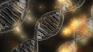DNA unter Elektronenmikroskop