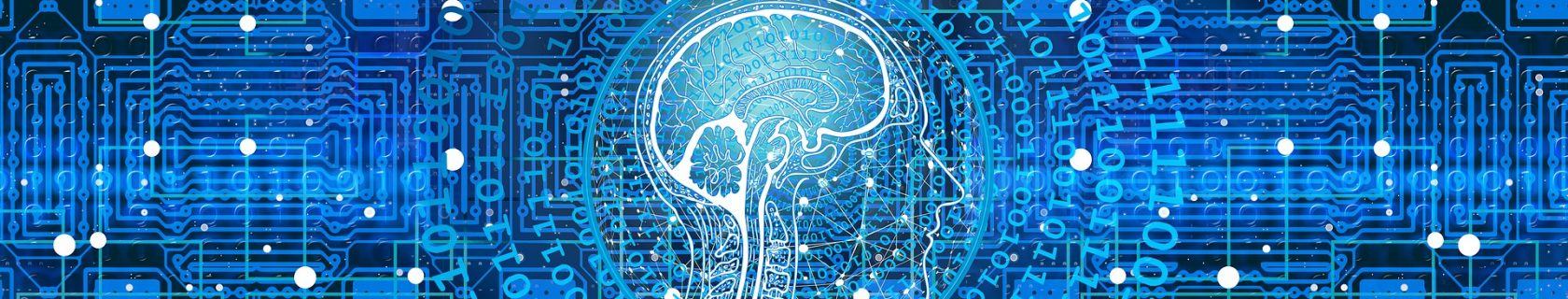 Kopf und Gehirn stilisiert